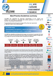 best practice guidelines summary